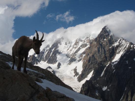 Etagne face au Mont Blanc