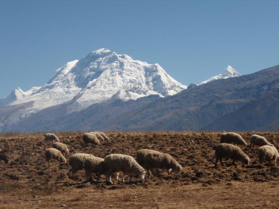 Vue sur le Huascaran 6768 m
